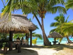Bar de la plage de l'Hotel Les Tipaniers